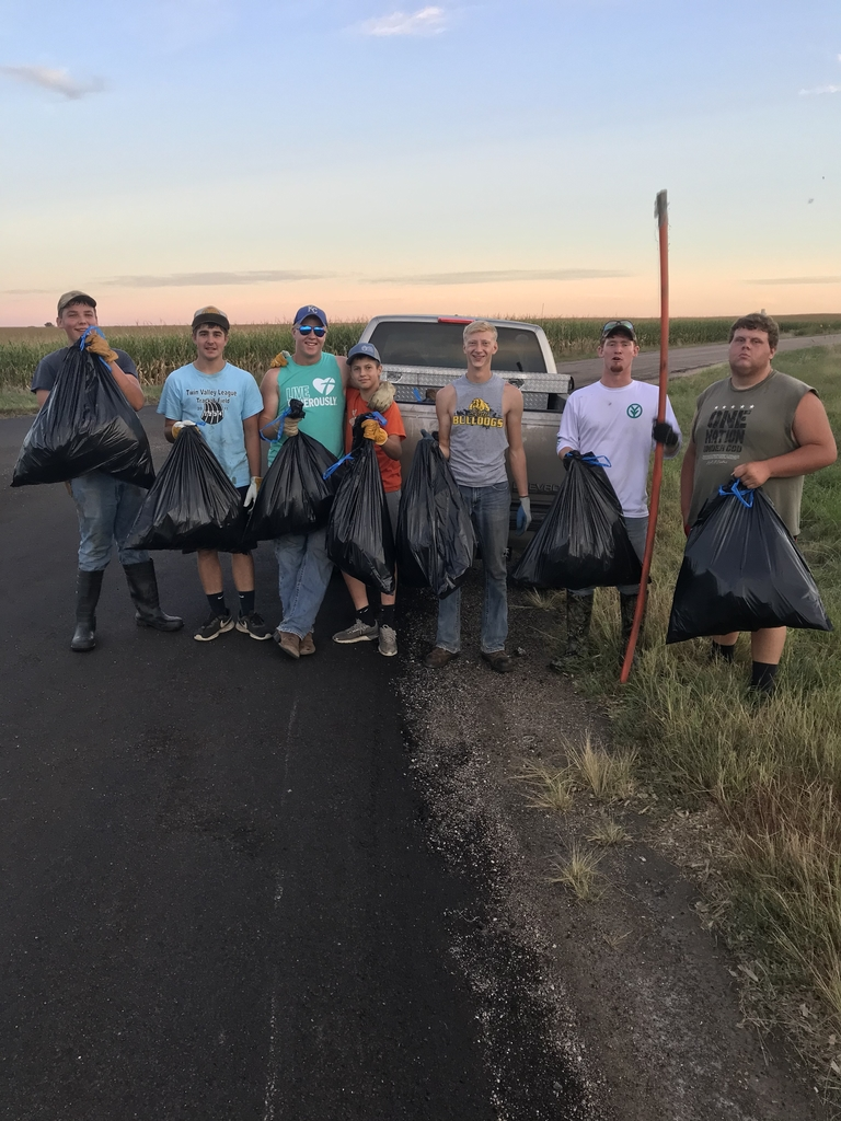 Roadside Cleanup